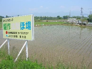 松米6月4日�A.JPG
