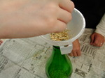 籾を瓶の中へ.JPG